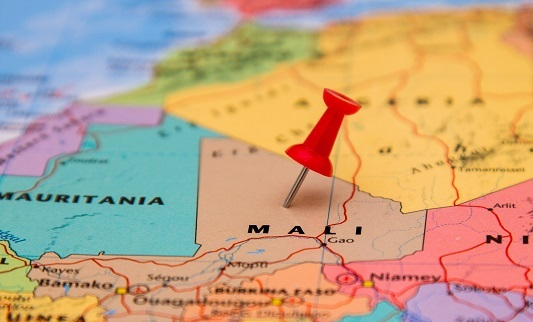EU implements first UN sanctions on Mali